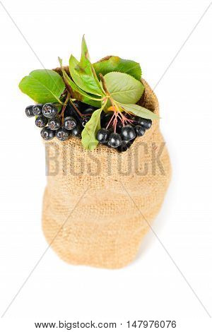 Aronia berry in the bag isolated on a white background