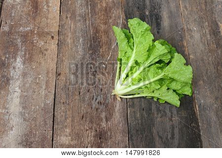 Chinese cabbage organic vegetable on  wooden table. Insect eat hole in the leaf. copy space background.
