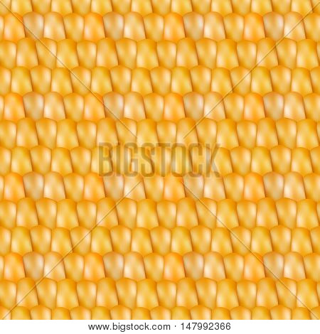 Grainy background. Realistic seamless texture corn vector illustration.