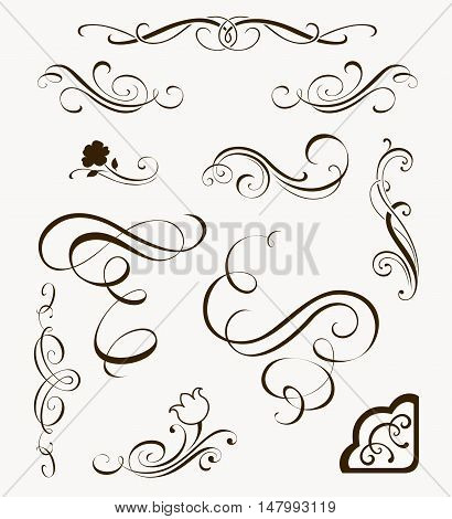 Set of decorative flourish elements. Calligraphic ornaments and borders for your design. Floral silhouettes