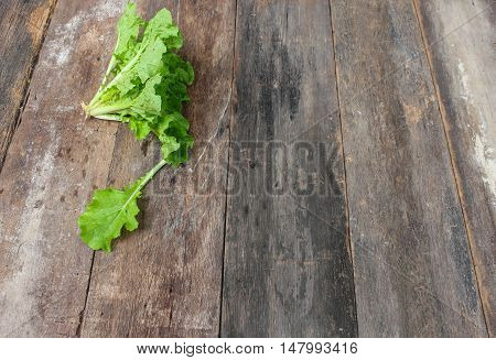 Chinese cabbage organic vegetables on a wooden table. Insect eat hole in the leaf. Top view