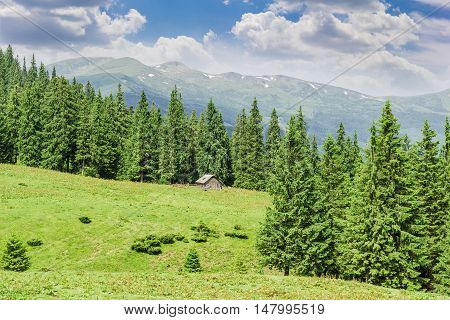 Mountain glade with a rural outbuildings surrounded by fir forest against a background of ridge and sky with clouds in the Carpathians