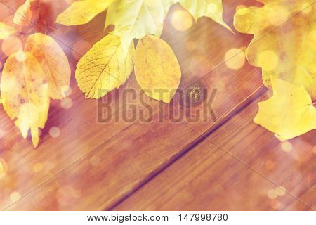 nature, season, advertisement and decor concept - close up of many different fallen autumn leaves on wooden board