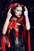 Beautiful brunette woman in black old-fashioned dress and red cloak in the thicket of the magic forest. Gothic style. Fashion. poster