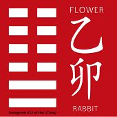 Symbol of i ching hexagram from chinese hieroglyphs. Translation of 12 zodiac feng shui signs hieroglyphs- flower and rabbit. poster