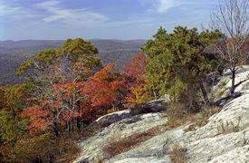 Fall Foliage At Bear Mountain