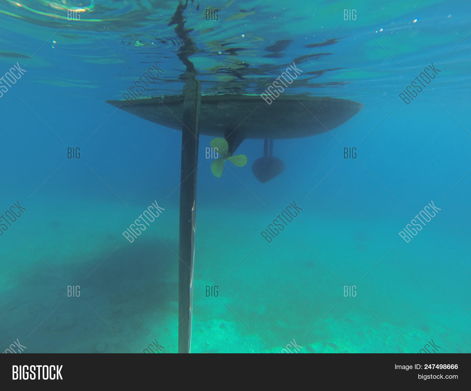 Underwater Parts Image & Photo (Free Trial) | Bigstock