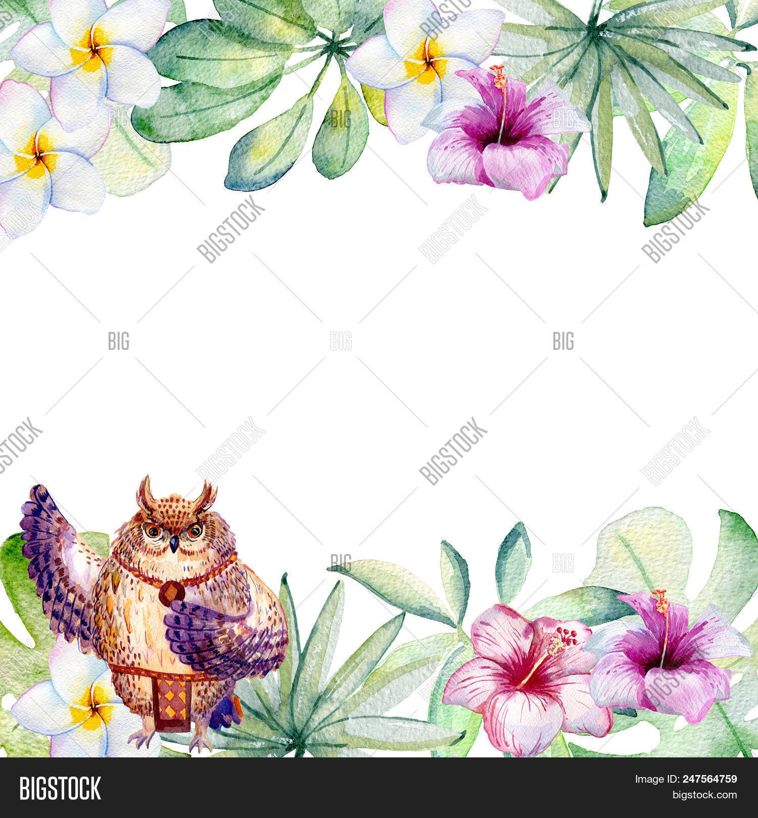 Frame. Watercolor Image & Photo (Free Trial) | Bigstock
