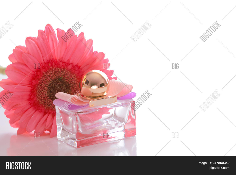 Beautiful Perfume Image Photo Free Trial Bigstock