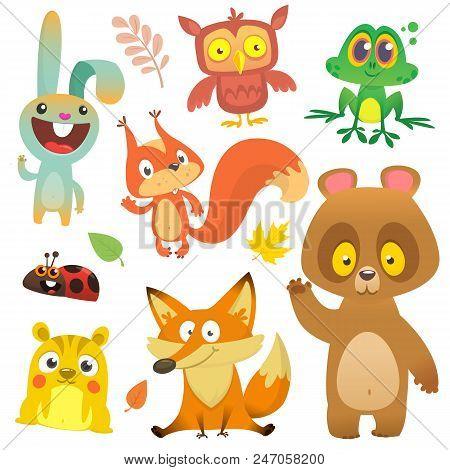 Cartoon Forest Animals Characters Set.vector Illustration. Big Set Of Cartoon Woodland Animals Illus