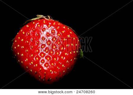 strawberry macro black background