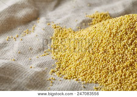 Pile Of Natural Organic Millet On Homespun Tablecloth, Top View, Close-up, Selective Focus. Some Cop
