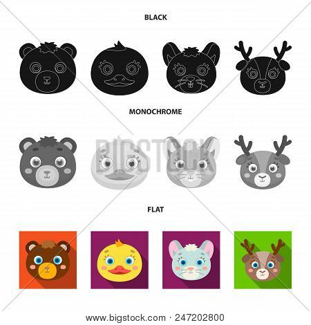 Bear, Duck, Mouse, Deer. Animal Muzzle Set Collection Icons In Black, Flat, Monochrome Style Vector