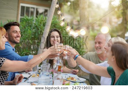 Friends cheering with wine at barbecue dinner