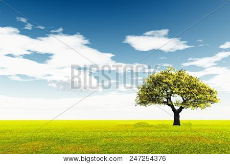 Alone Tree at  meadow and the  blue sky - 3D rendering
