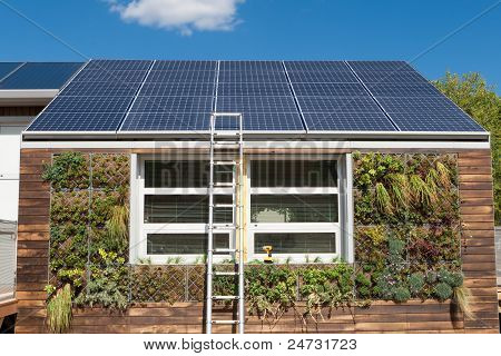Solar Home Under Repair Ladder Gray Water System