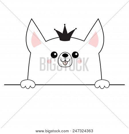 Corgi Dog Happy Face Vector Photo Free Trial Bigstock Cute baby elephant cartoon sitting. corgi dog happy face vector photo
