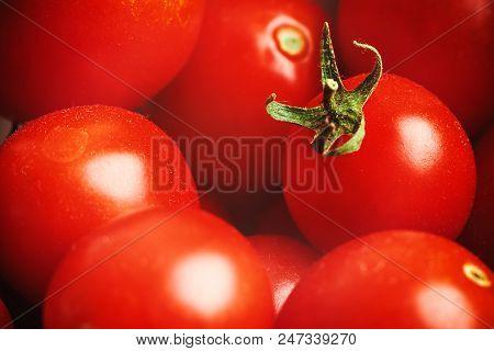 Red Small Tomato