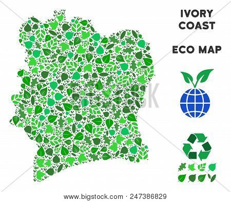 Ecology Ivory Coast map mosaic of herbal leaves in green color hues. Ecological environment vector concept. Ivory Coast map is formed of green herbal parts. Abstract area plan. poster