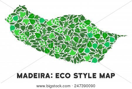 Ecology Portugal Madeira Island Map Collage Of Plant Leaves In Green Color Tinges. Ecological Enviro
