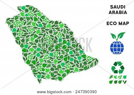 Ecology Saudi Arabia Map Collage Of Herbal Leaves In Green Color Variations. Ecological Environment