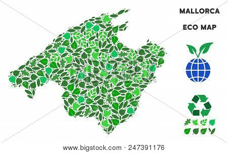 Ecology Spain Mallorca Island Map Composition Of Floral Leaves In Green Color Tints. Ecological Envi