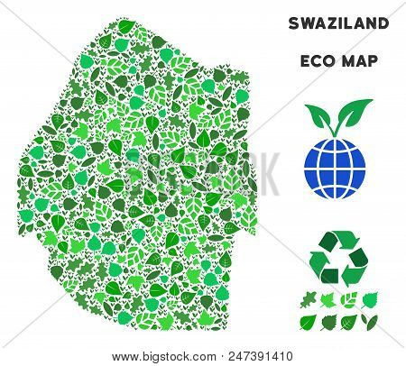 Ecology Swaziland Map Composition Of Floral Leaves In Green Color Variations. Ecological Environment