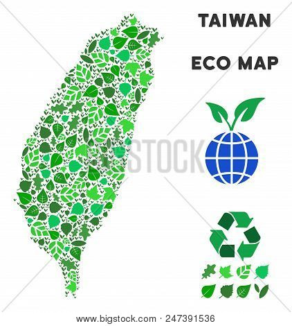 Ecology Taiwan Island Map Composition Of Herbal Leaves In Green Color Shades. Ecological Environment