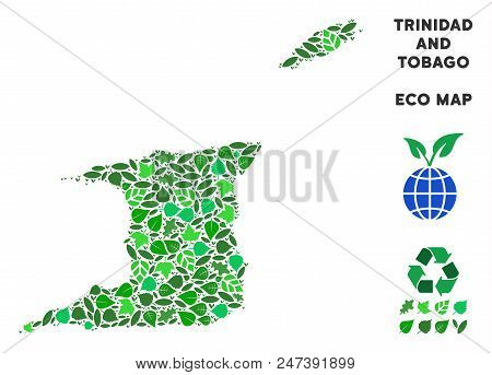 Ecology Trinidad And Tobago Map Composition Of Herbal Leaves In Green Color Tones. Ecological Enviro