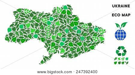 Ecology Ukraine Map Mosaic Of Floral Leaves In Green Color Tints. Ecological Environment Vector Temp