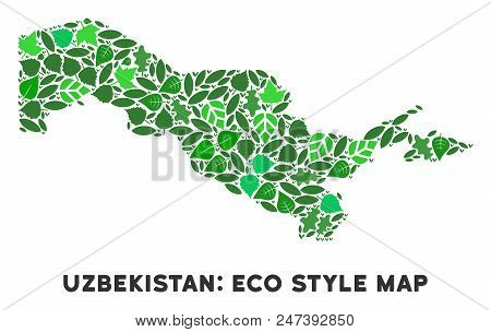 Ecology Uzbekistan Map Composition Of Herbal Leaves In Green Color Tinges. Ecological Environment Ve
