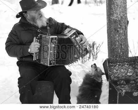 The Elderly Man With An Accordion