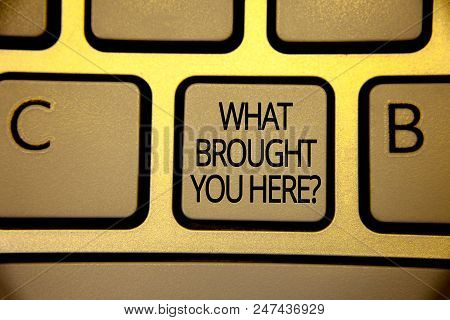 Word Writing Text What Brought You Here Question. Business Concept For Ambition Can Be Obtain By Det