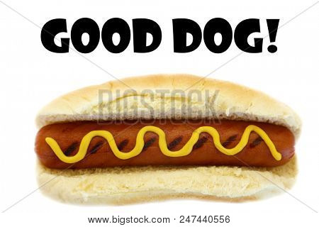 Hot Dog. Good Dog Hot Dog. Isolated on white. Room for text. Text or image is easily moved as needed.