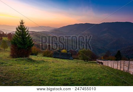 Wooden Fence On A Grassy Rural Hillside At Autumn Dawn. Horese, Woodshed And Spruce In The Scene. Go