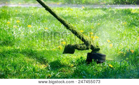 Grass Cutting In The Garden With Gasoline Trimmer. Lovely Nature Background