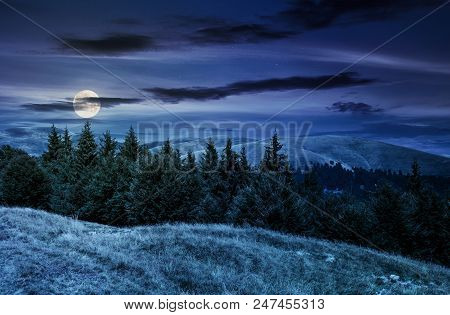 Summer Landscape With Forested Hills At Night In Full Moon Light. Beautiful Scenery Of Svydovets Mou