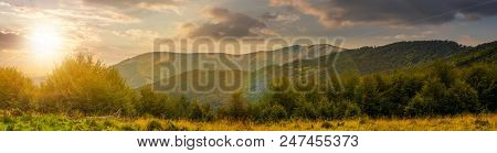 Panorama Of Carpathian Mountains At Sunset. Beautiful Landscape With Forested Hills And Apetska Moun