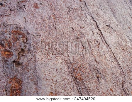 The Surface Of The Red Cliffs