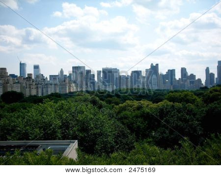 Central Park View