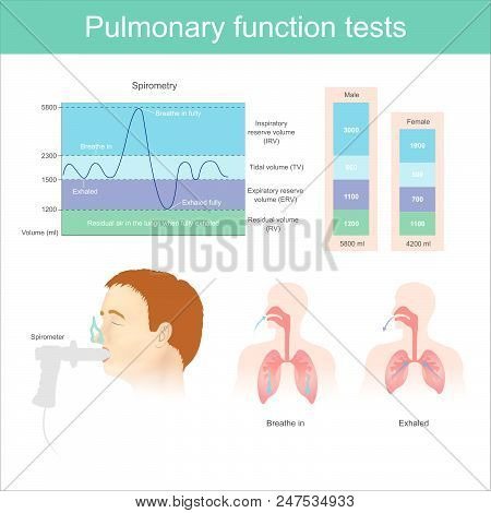 Pulmonary Function Tests. Testing For Volume Of Air In The Lungs During Breathe In And Exhaling Full