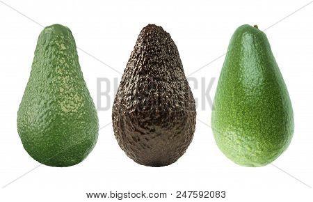 Three Avocados Isolated. Isolated Avocado. Cut Avocado Fruit Isolated On White Background. Avocado W
