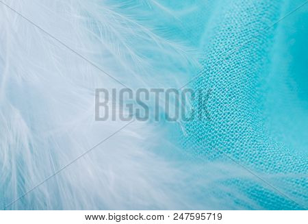 Soft Focus White Feather On Bright Turquoise Fabric As An Abstract Fairy-like Background (shallow Do