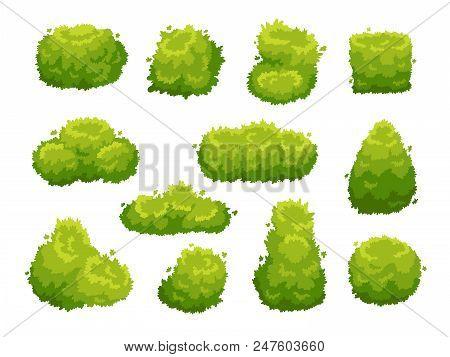 Garden Bush. Green Garden Vegetation Bushes Icon. Cartoon Shrubs For Outdoor Decorate Landscape Park