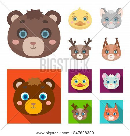 Bear, Duck, Mouse, Deer. Animal Muzzle Set Collection Icons In Cartoon, Flat Style Vector Symbol Sto
