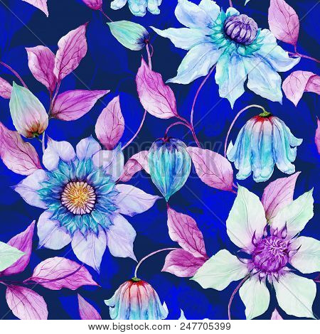 Beautiful Clematis Flowers On Climbing Twigs Against Ultramarine Background. Seamless Floral Pattern