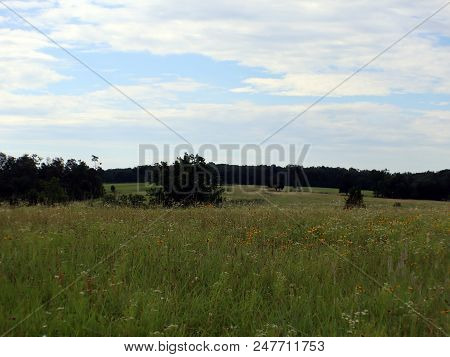 A Meadow With Rolling Hills, Blue Sky, And Clouds