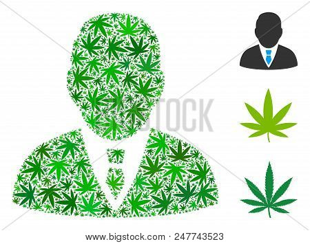 Boss Composition Of Hemp Leaves In Variable Sizes And Green Tones. Vector Flat Hemp Icons Are Organi