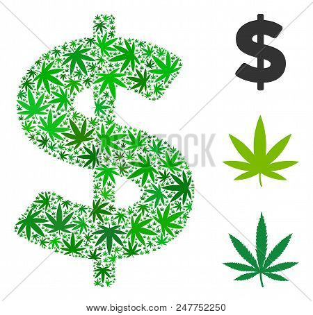 Dollar Mosaic Of Cannabis Leaves In Variable Sizes And Green Tinges. Vector Flat Cannabis Objects Ar