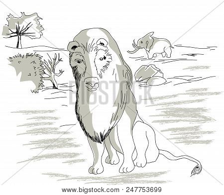 Lion In The Africa.  Illustration Of Wildlife In The Africa, Elephant And Lion. African Lion And Ani